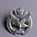 Cap Badge Glider Pilot Regiment 1950 – 57