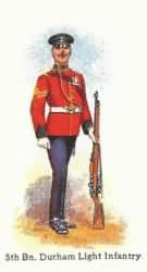 Territorial Force