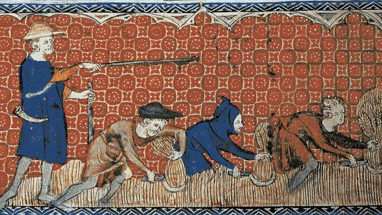 Statute of Cambridge 1388