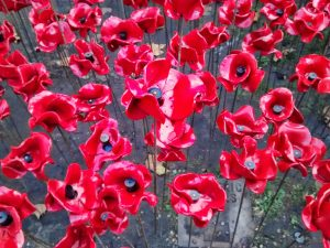 poppies-tower-of-london-img_20141105_155610500